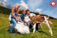 Bergdorf der Tiere